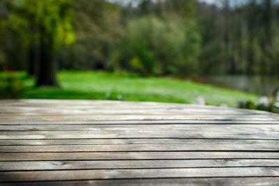 Co zagraża drewnu?
